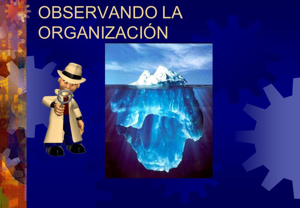 OBSERVANDO LA ORGANIZACIÓN