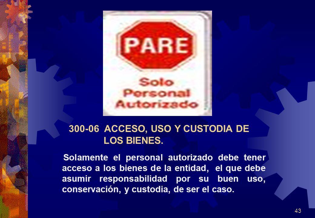 300-06 ACCESO, USO Y CUSTODIA DE LOS BIENES.