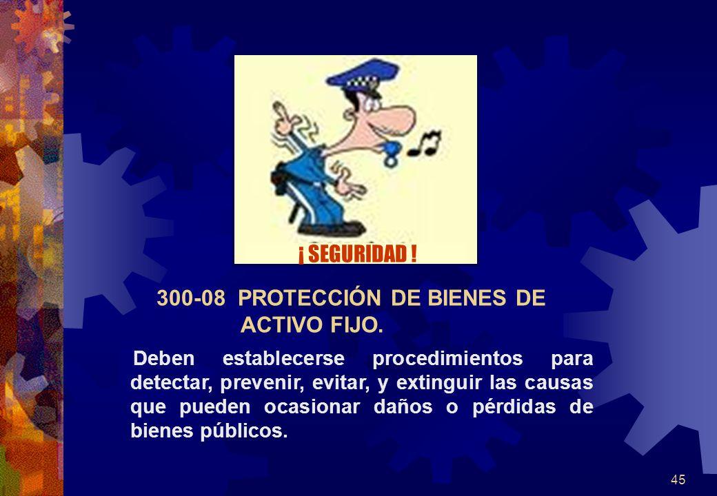 300-08 PROTECCIÓN DE BIENES DE ACTIVO FIJO.
