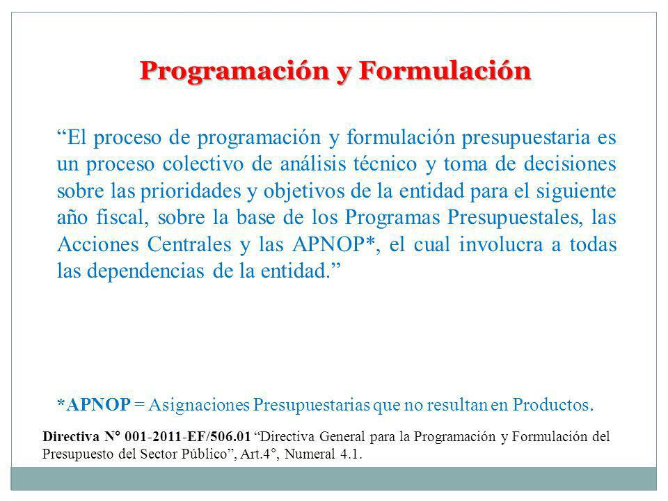 Programación y Formulación