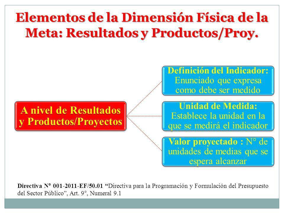 A nivel de Resultados y Productos/Proyectos