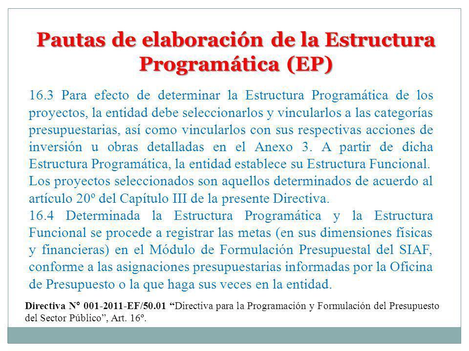 Pautas de elaboración de la Estructura Programática (EP)