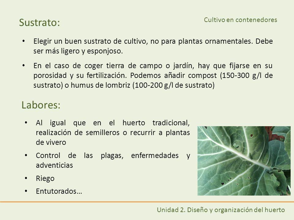 Cultivo en contenedores ppt descargar for Que es un vivero de plantas ornamentales