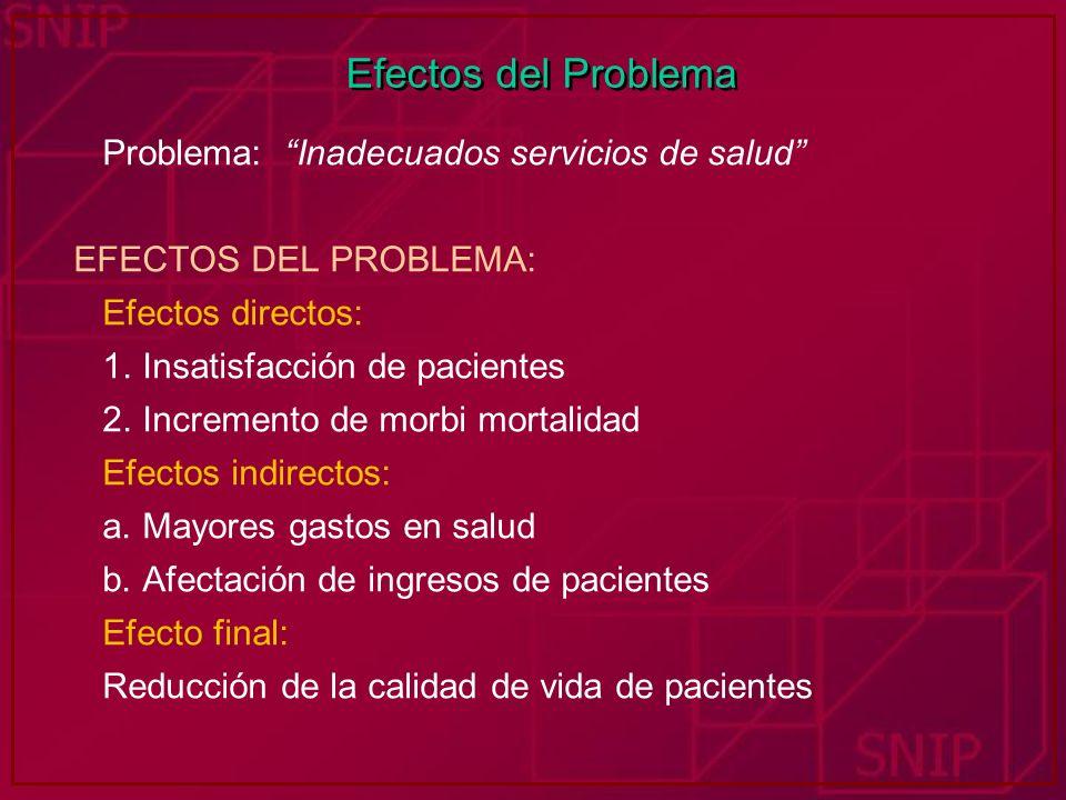 Efectos del Problema Problema: Inadecuados servicios de salud