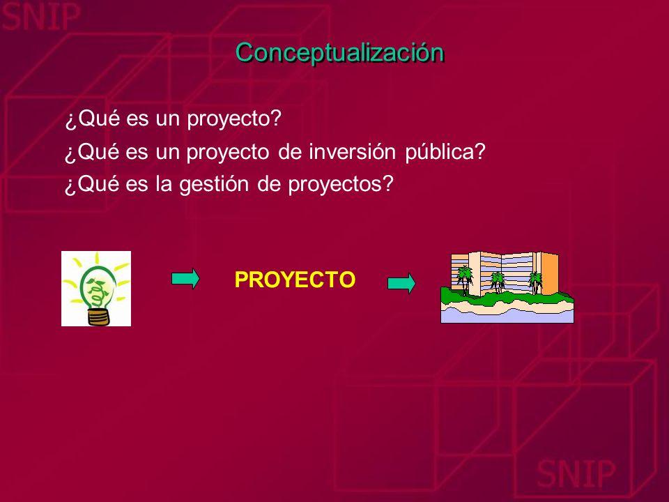 Conceptualización ¿Qué es un proyecto