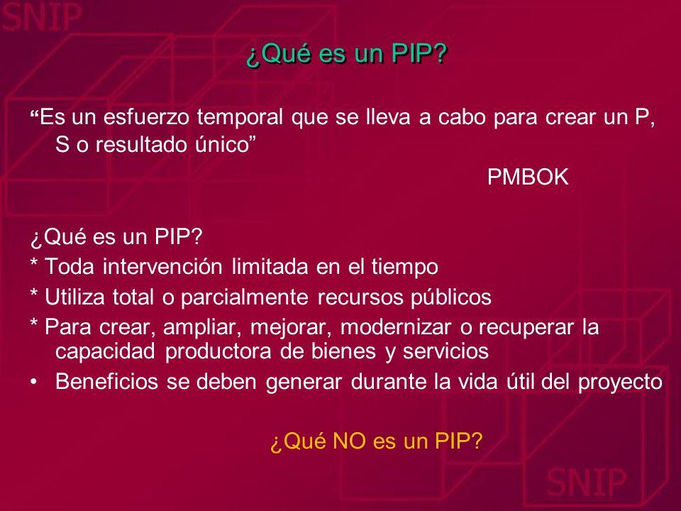 ¿Qué es un PIP PMBOK ¿Qué es un PIP