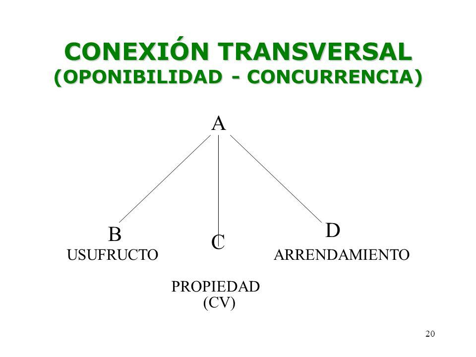 CONEXIÓN TRANSVERSAL (OPONIBILIDAD - CONCURRENCIA)