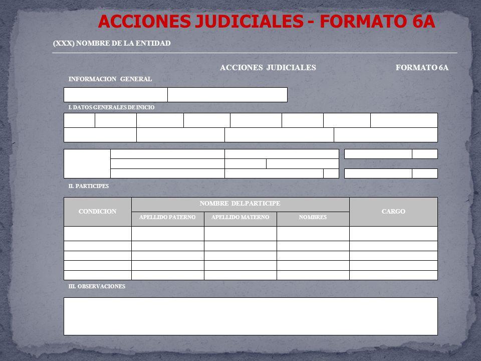 ACCIONES JUDICIALES - FORMATO 6A