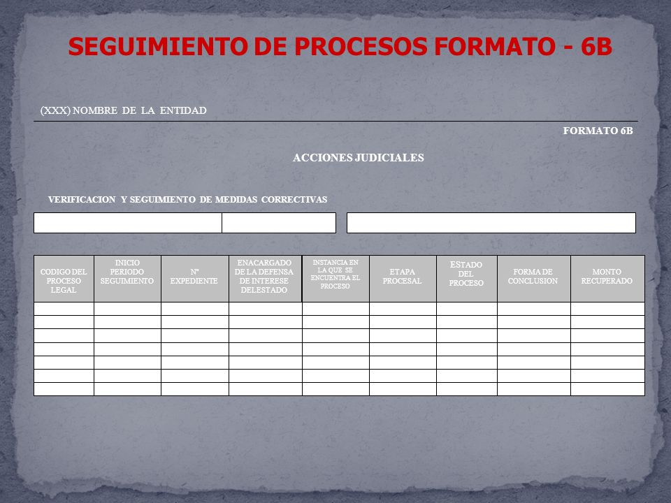 SEGUIMIENTO DE PROCESOS FORMATO - 6B