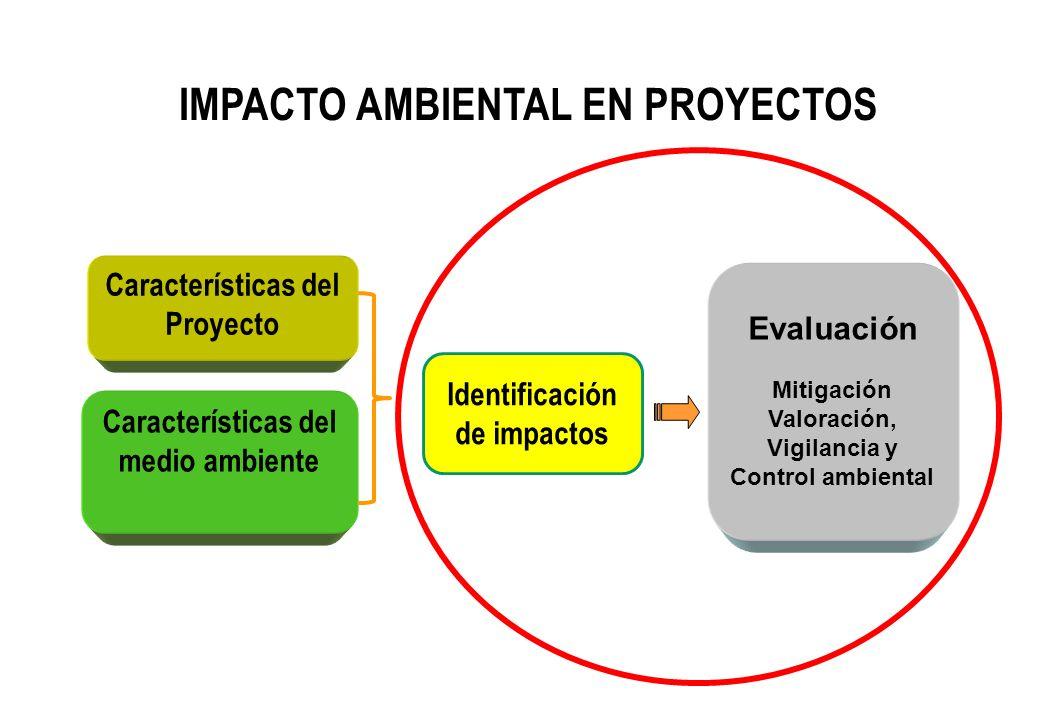 IMPACTO AMBIENTAL EN PROYECTOS