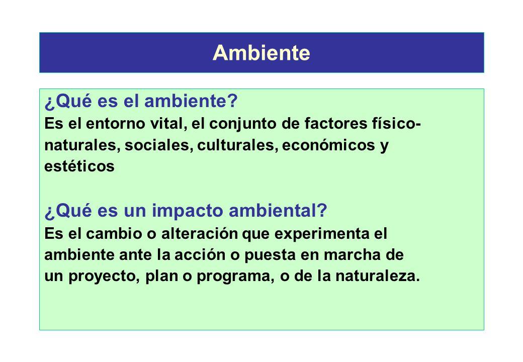 Ambiente ¿Qué es el ambiente ¿Qué es un impacto ambiental