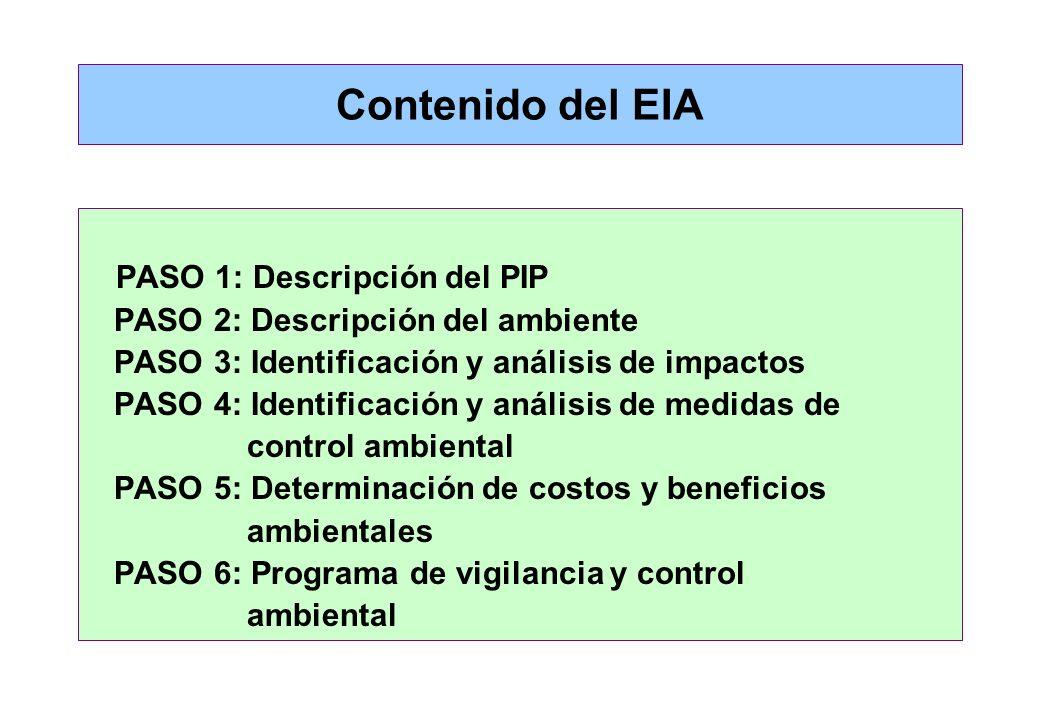 Contenido del EIA PASO 1: Descripción del PIP