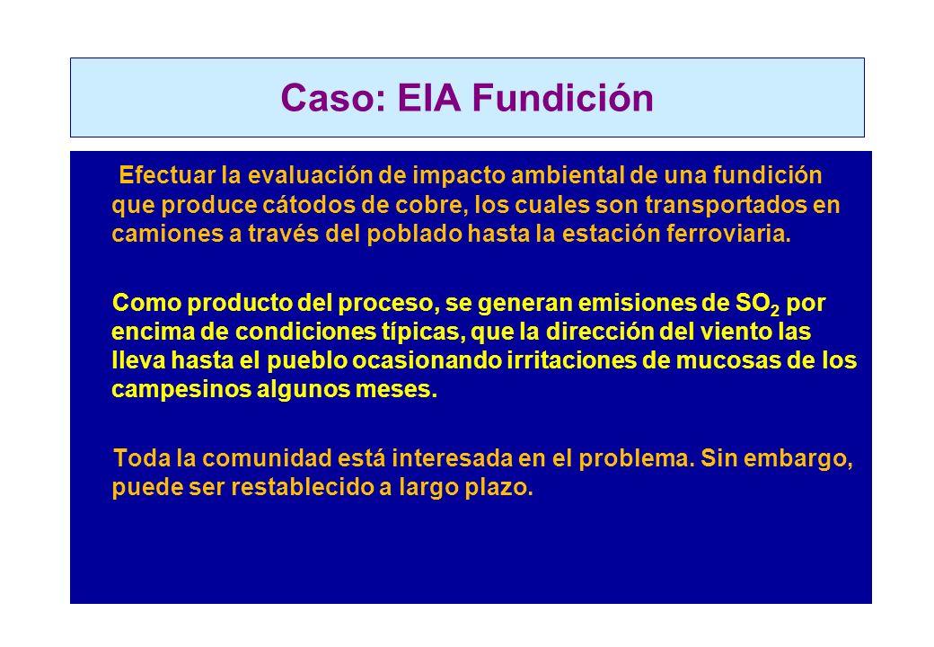 Caso: EIA Fundición
