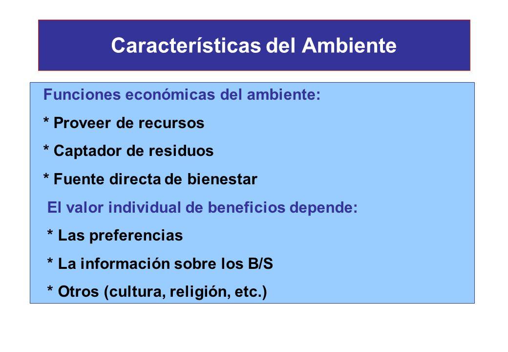 Características del Ambiente