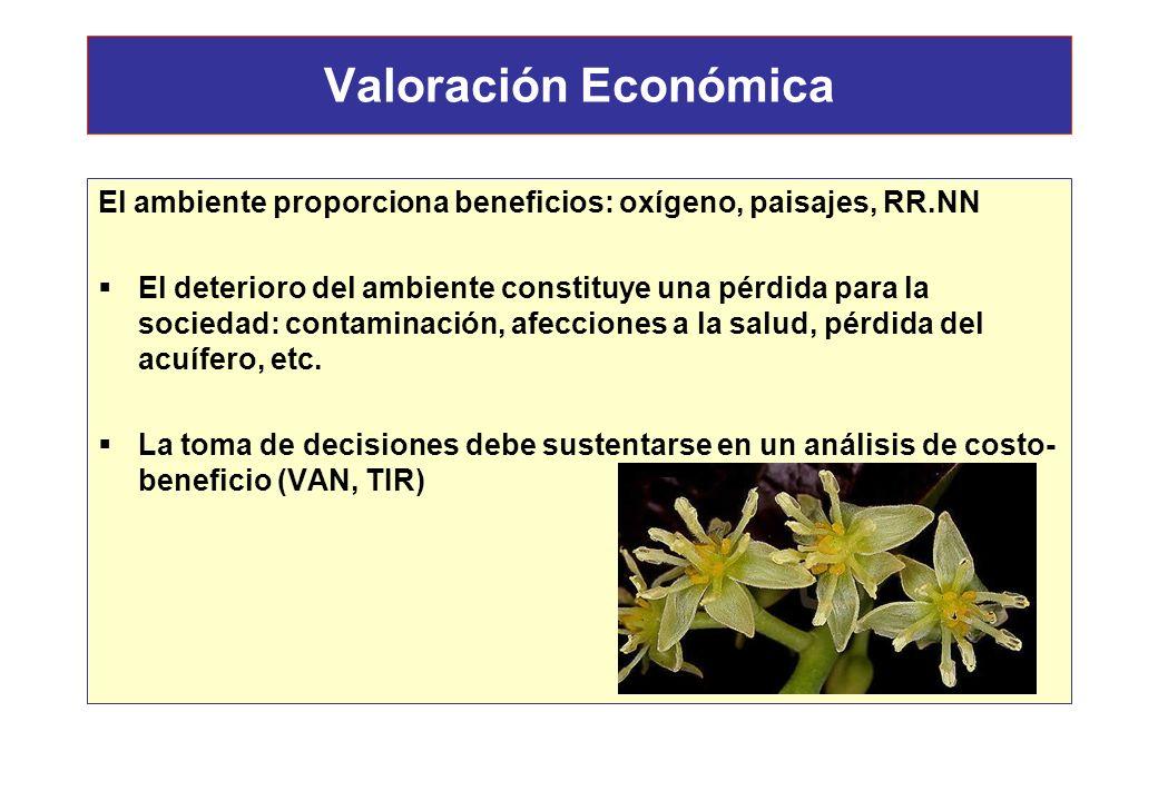 Valoración Económica El ambiente proporciona beneficios: oxígeno, paisajes, RR.NN.