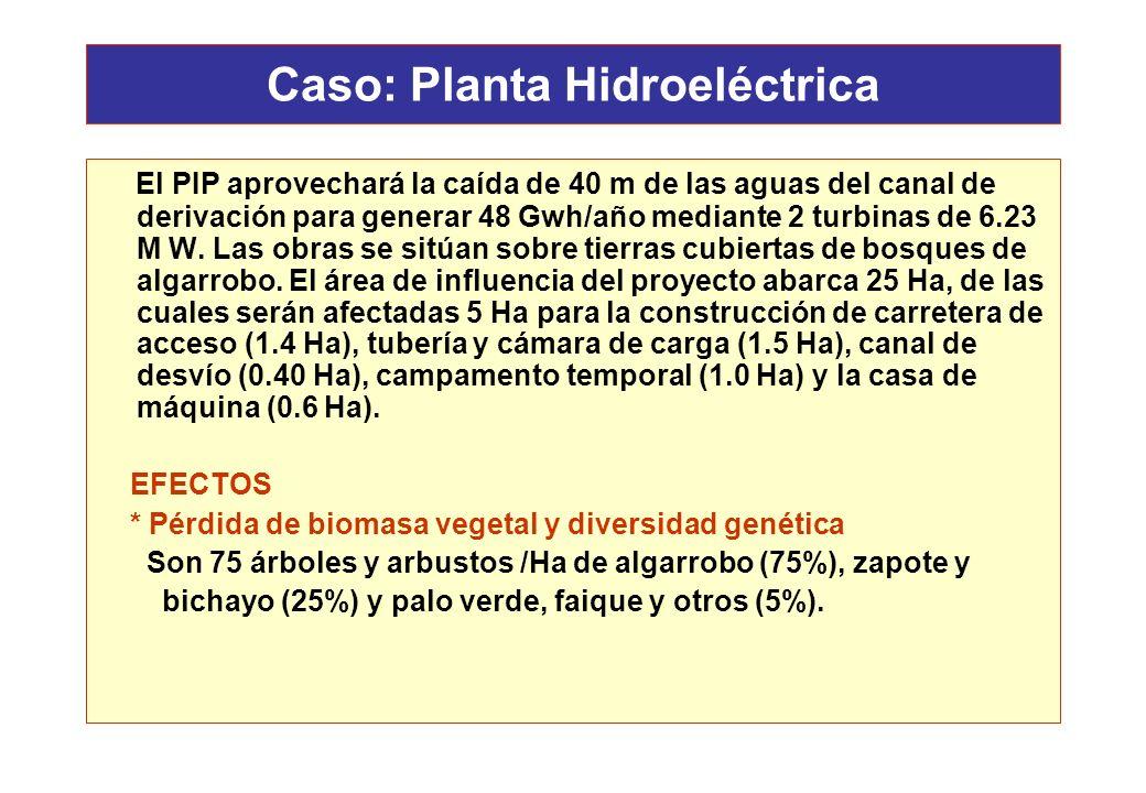 Caso: Planta Hidroeléctrica