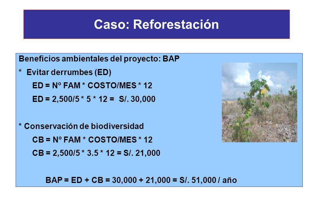 Caso: Reforestación Beneficios ambientales del proyecto: BAP