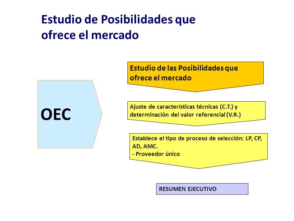 OEC Estudio de Posibilidades que ofrece el mercado