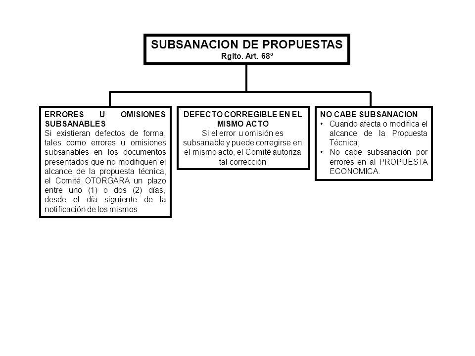 SUBSANACION DE PROPUESTAS DEFECTO CORREGIBLE EN EL MISMO ACTO