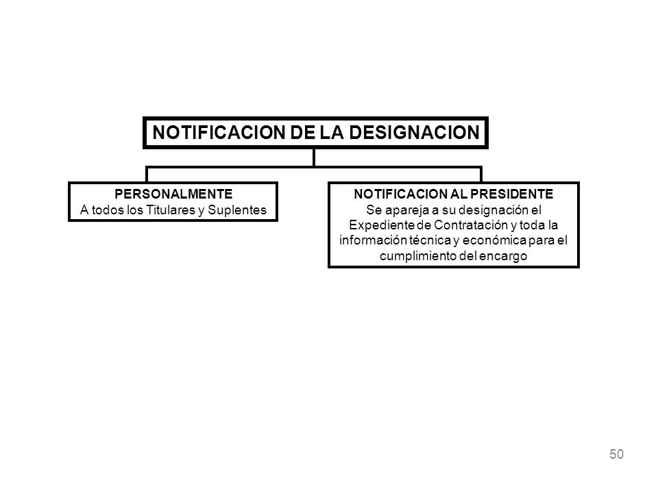 NOTIFICACION DE LA DESIGNACION NOTIFICACION AL PRESIDENTE