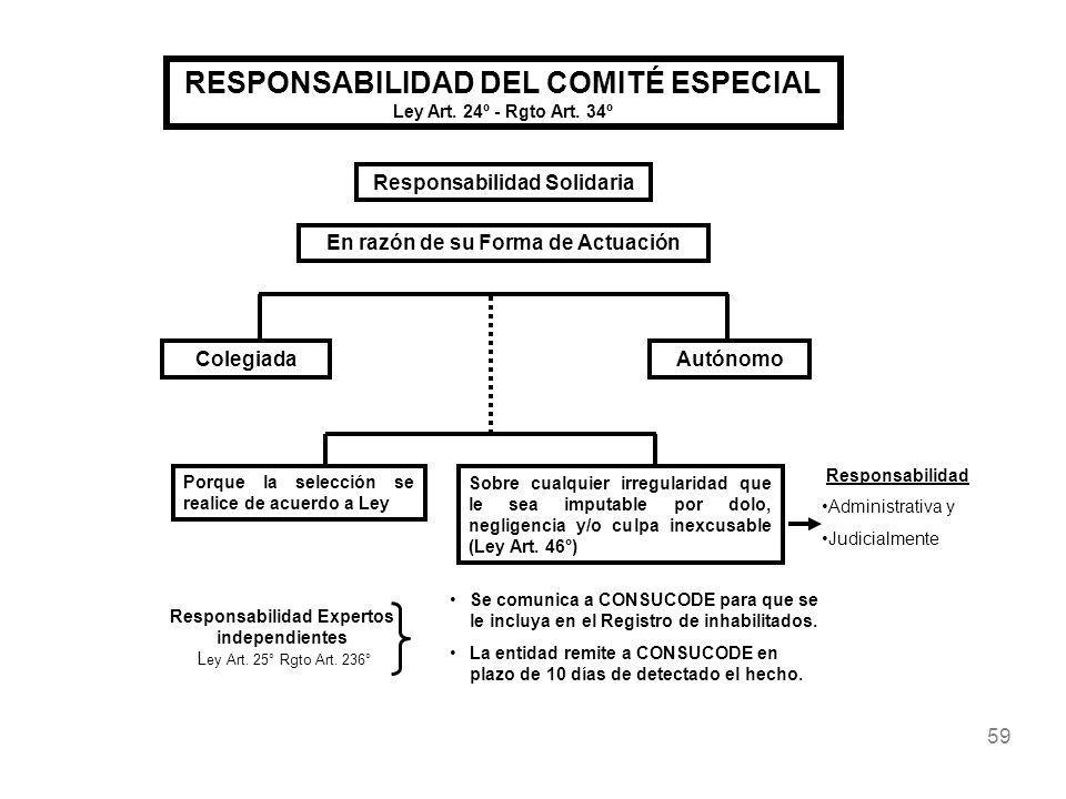 RESPONSABILIDAD DEL COMITÉ ESPECIAL