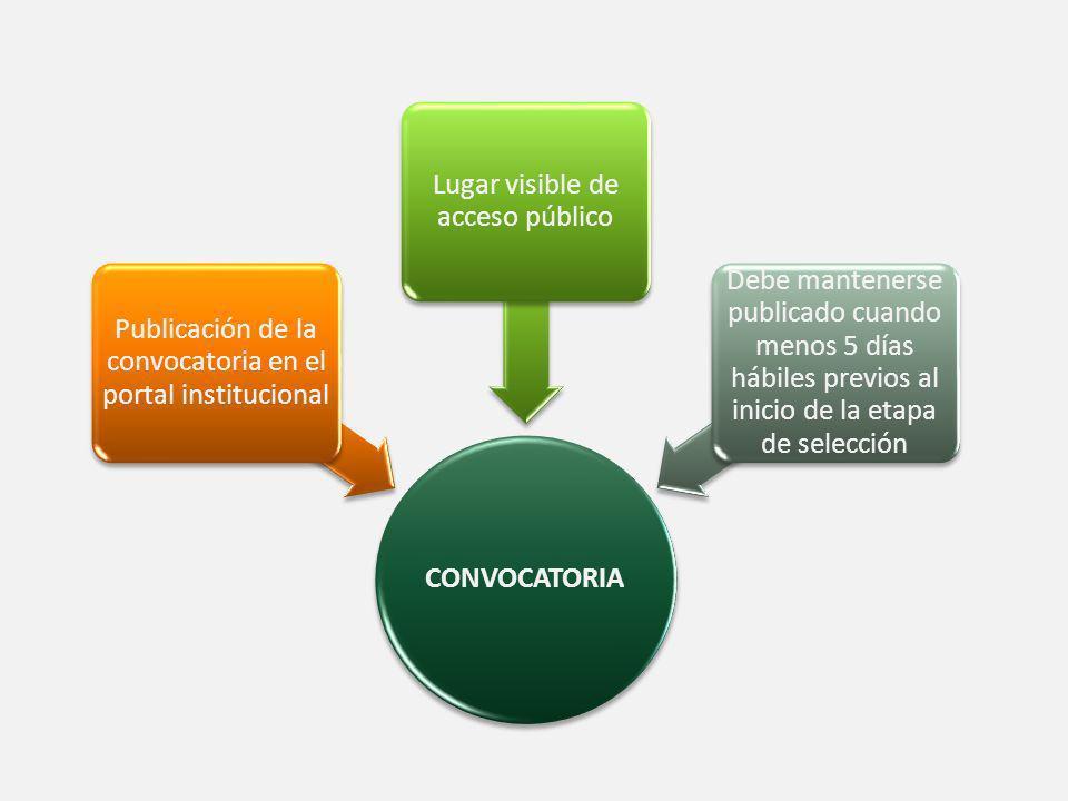 Publicación de la convocatoria en el portal institucional