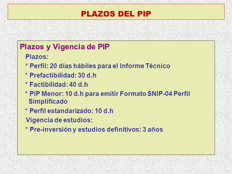 Plazos y Vigencia de PIP