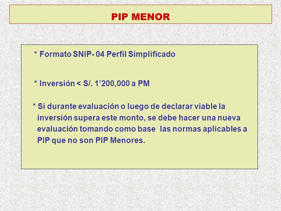 * Formato SNIP- 04 Perfil Simplificado
