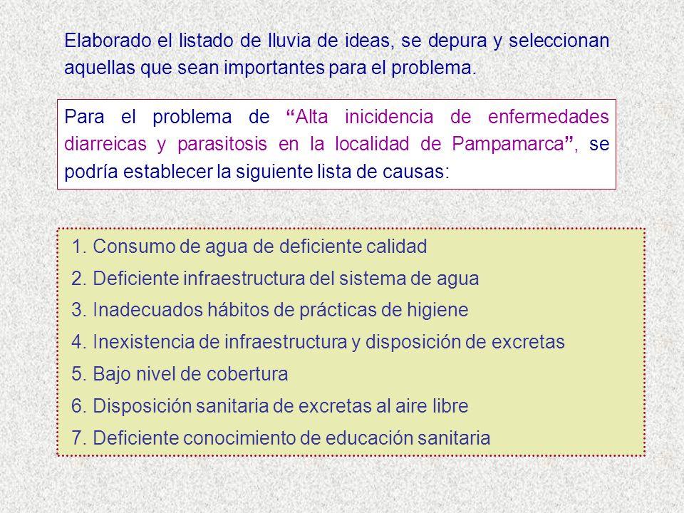 Elaborado el listado de lluvia de ideas, se depura y seleccionan aquellas que sean importantes para el problema.