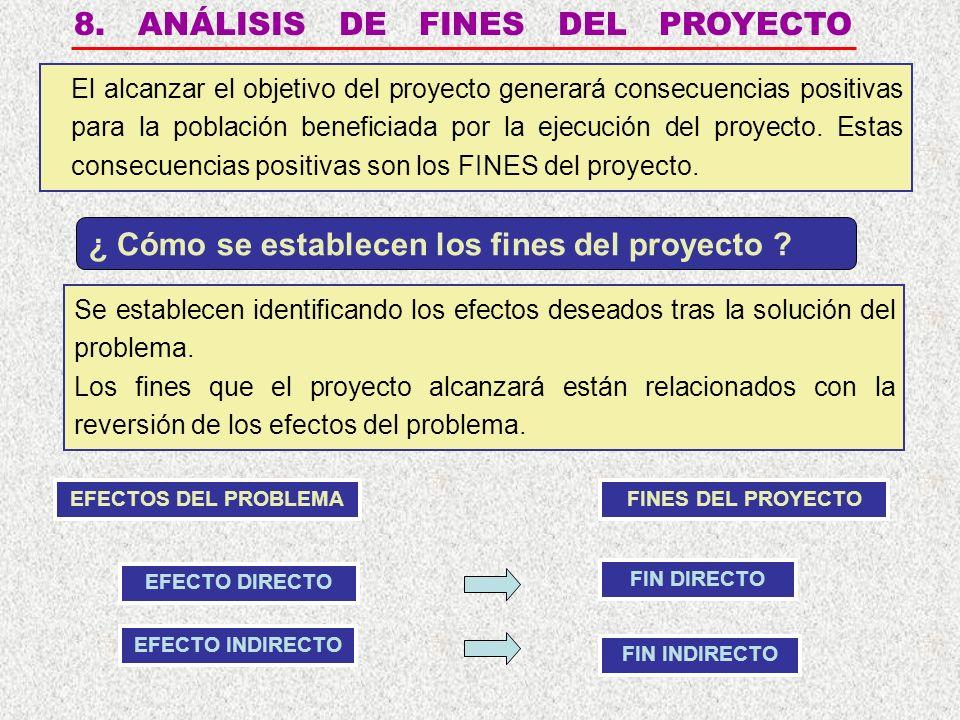 8. ANÁLISIS DE FINES DEL PROYECTO