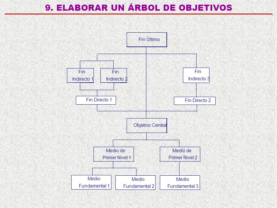 9. ELABORAR UN ÁRBOL DE OBJETIVOS