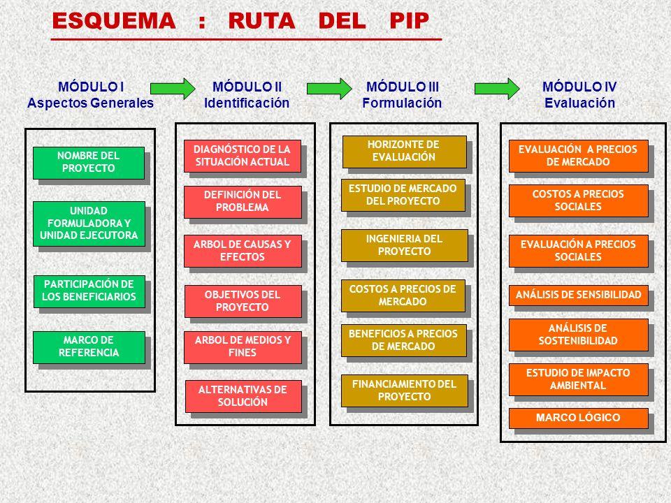 ESQUEMA : RUTA DEL PIP MÓDULO I Aspectos Generales