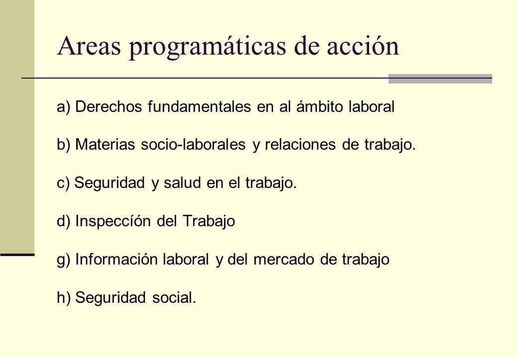 Areas programáticas de acción