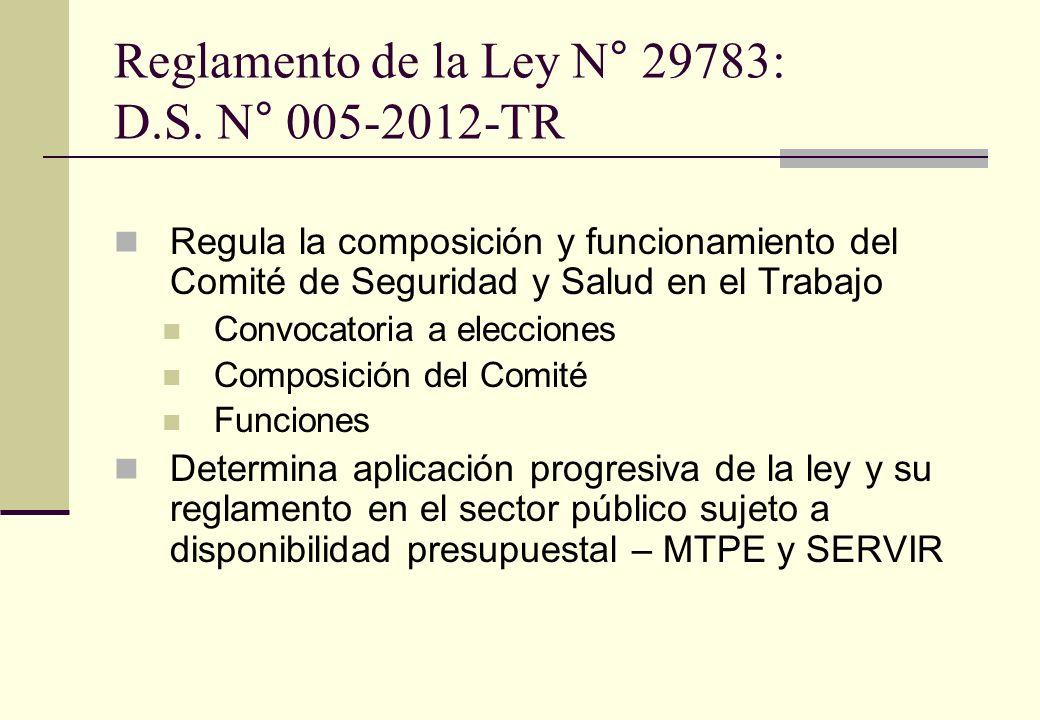 Reglamento de la Ley N° 29783: D.S. N° 005-2012-TR