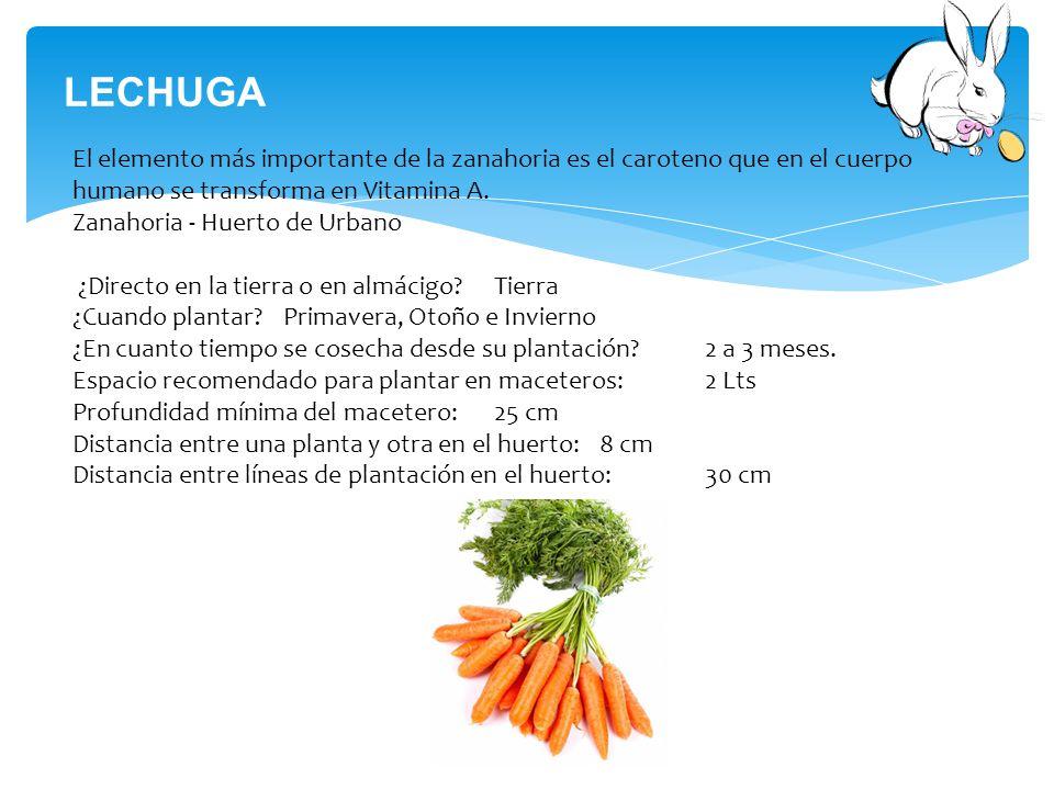Alternativas alimenticias ppt descargar for En cuanto tiempo se cosecha la tilapia