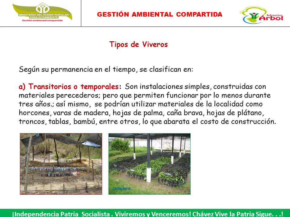 Viveros ppt video online descargar for Construccion de viveros