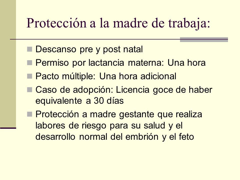 Protección a la madre de trabaja: