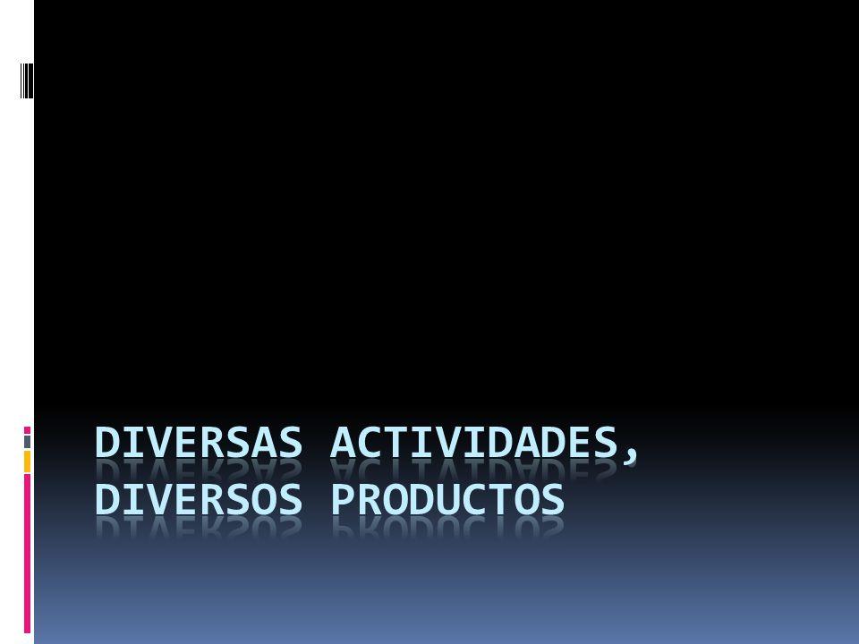 DIVERSAS ACTIVIDADES, DIVERSOS PRODUCTOS