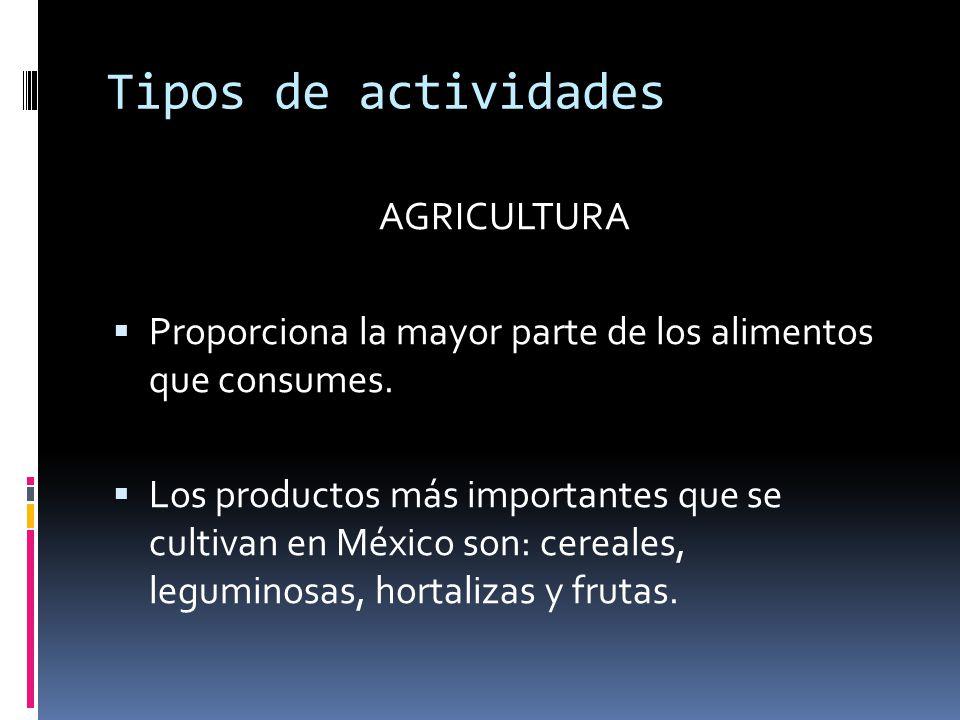 Tipos de actividades AGRICULTURA