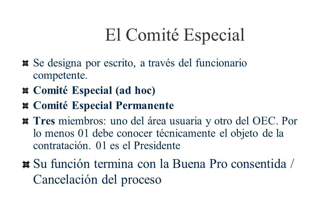 El Comité EspecialSe designa por escrito, a través del funcionario competente. Comité Especial (ad hoc)