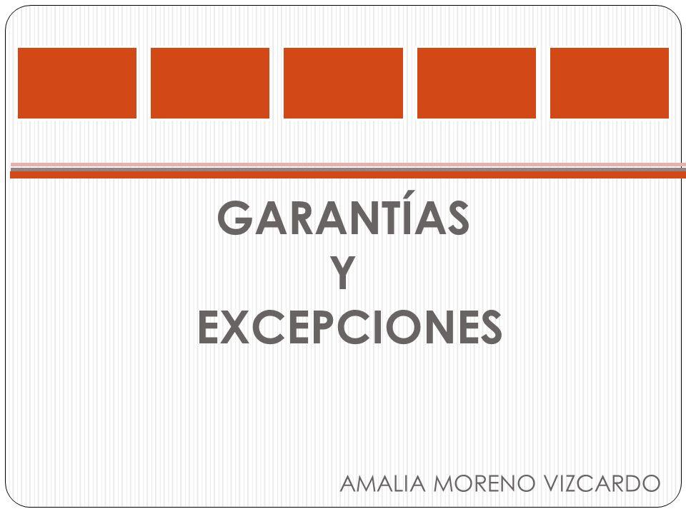 GARANTÍAS Y EXCEPCIONES