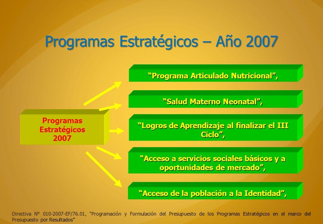 Programas Estratégicos – Año 2007