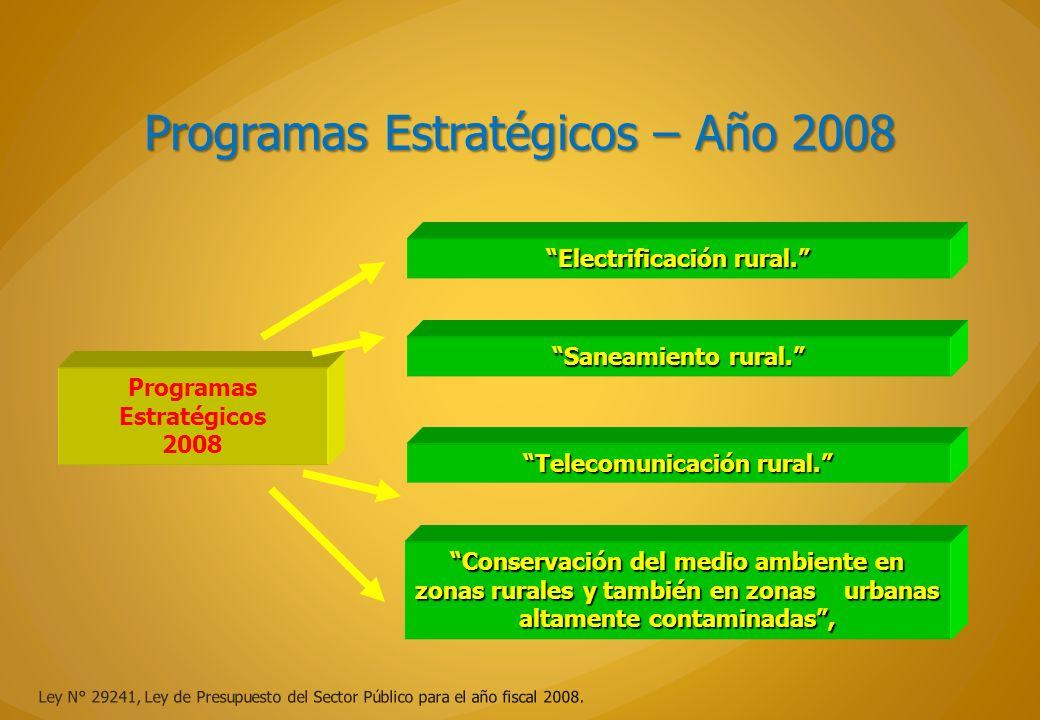 Programas Estratégicos – Año 2008