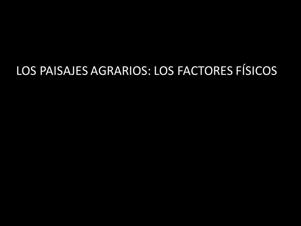 LOS PAISAJES AGRARIOS: LOS FACTORES FÍSICOS
