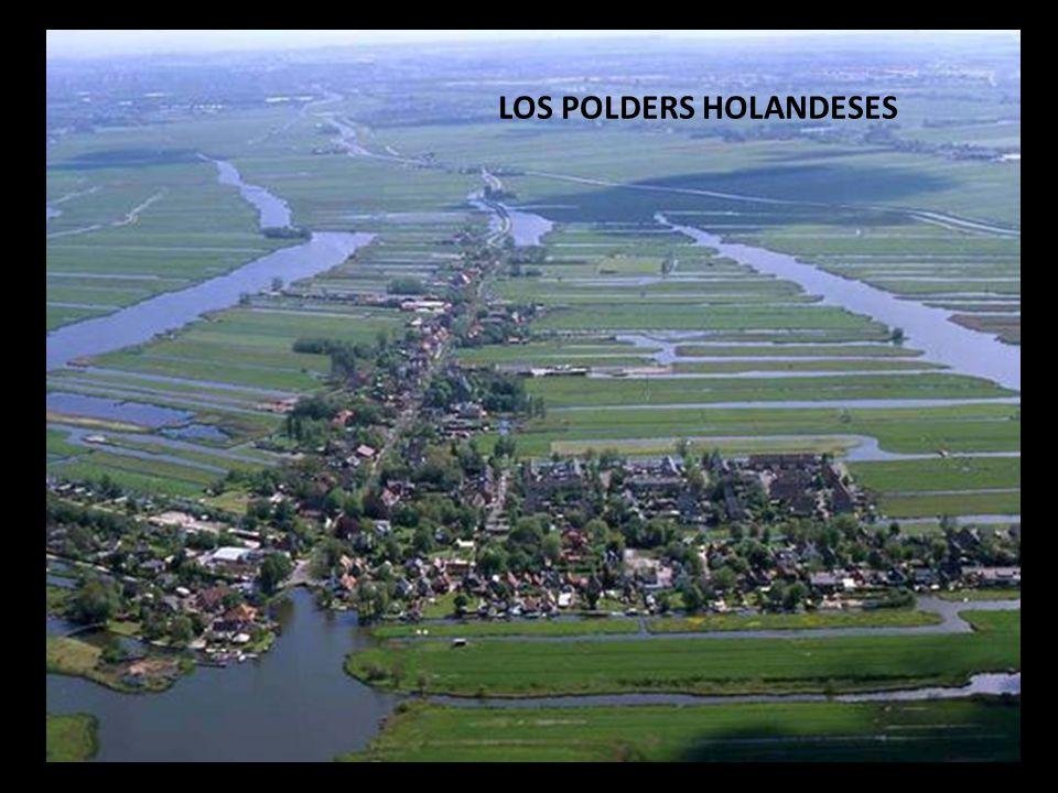 LOS POLDERS HOLANDESES
