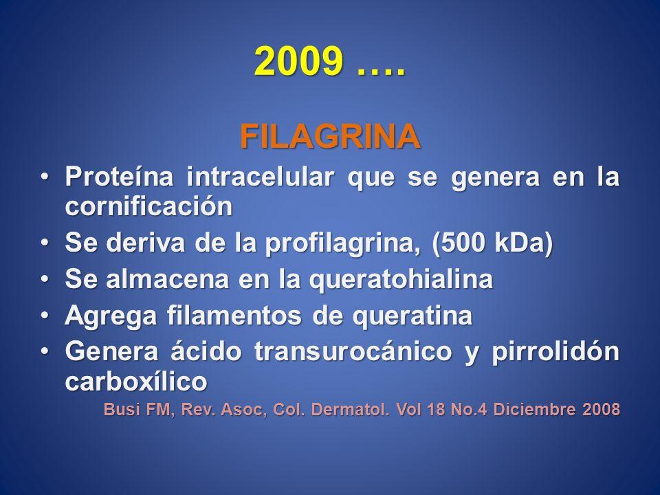2009 ….FILAGRINA. Proteína intracelular que se genera en la cornificación. Se deriva de la profilagrina, (500 kDa)