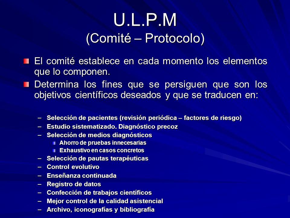 U.L.P.M (Comité – Protocolo)