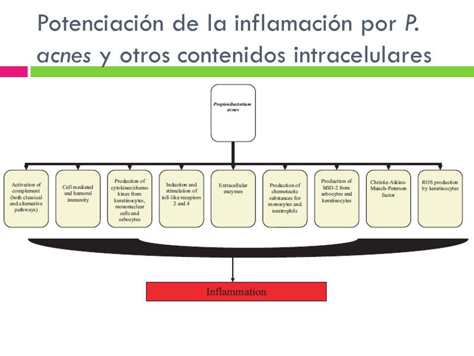 Potenciación de la inflamación por P