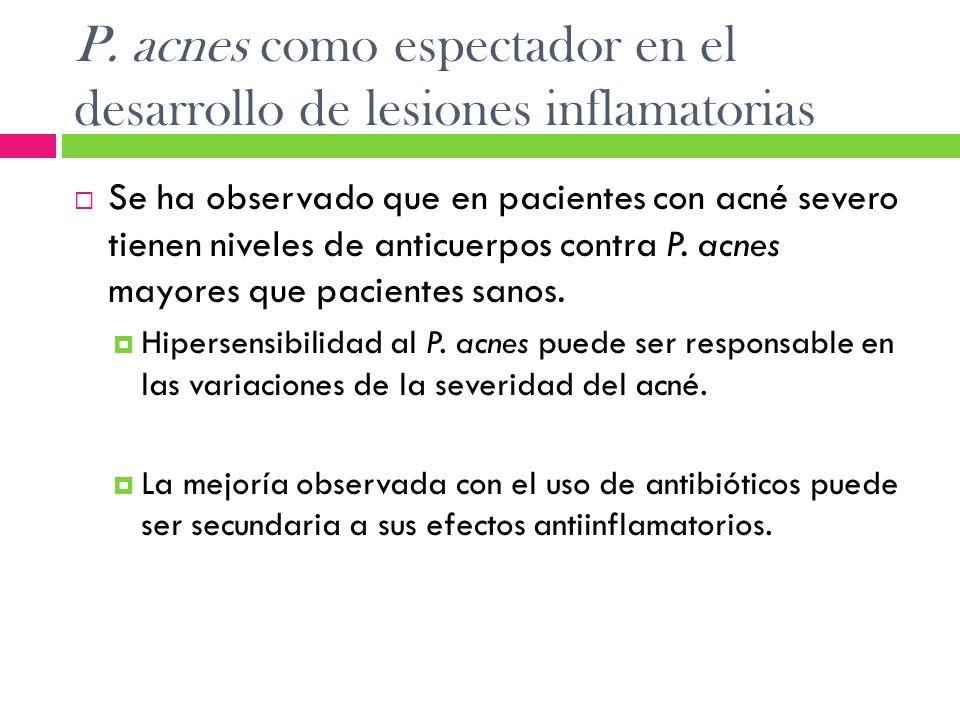 P. acnes como espectador en el desarrollo de lesiones inflamatorias