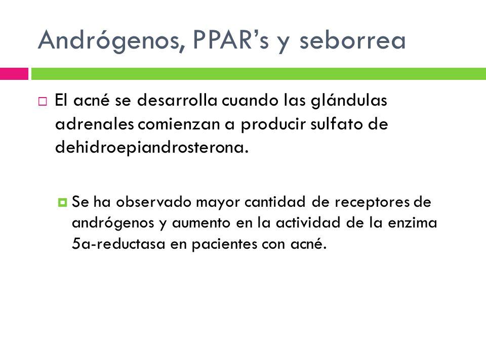 Andrógenos, PPAR's y seborrea